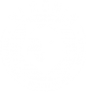 ronin-logo-ko-final-2